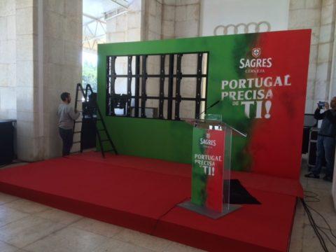 federaçao portuguesa de futebol